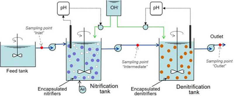 Quá trình nitrat hóa