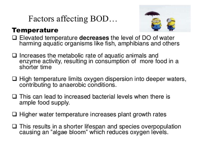 Các yếu tố ảnh hưởng tới BOD