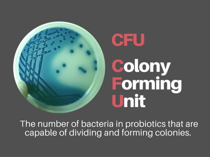 Khái niệm CFU