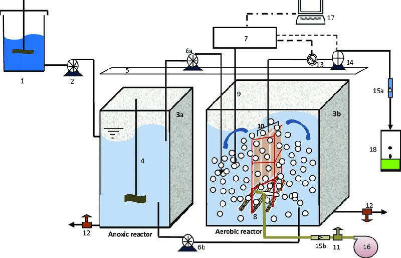 Tính toán bể anoxic trong quá trình xử lý nước thải y tế