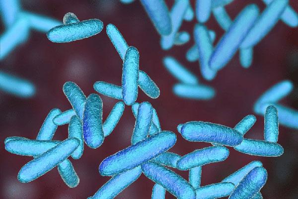 Vi khuẩn coliform trong nước thải